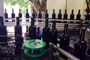 PW_2014_Vintage_Bottling